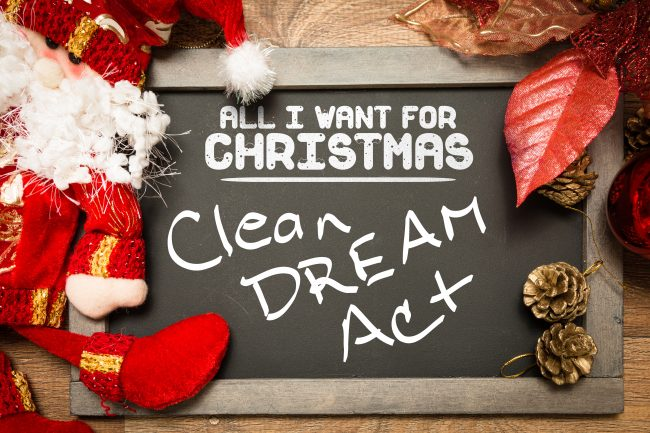 All I Want for Christmas is a Clean DREAM Act